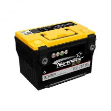 PURE LEAD ELITE AGM BATTERIJ 12V 60AH